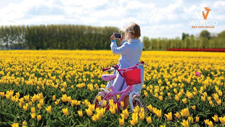 hoà mình vào lễ hội Floriade vào mùa xuân tại Úc
